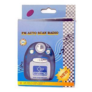 Radio FM Auto Scan